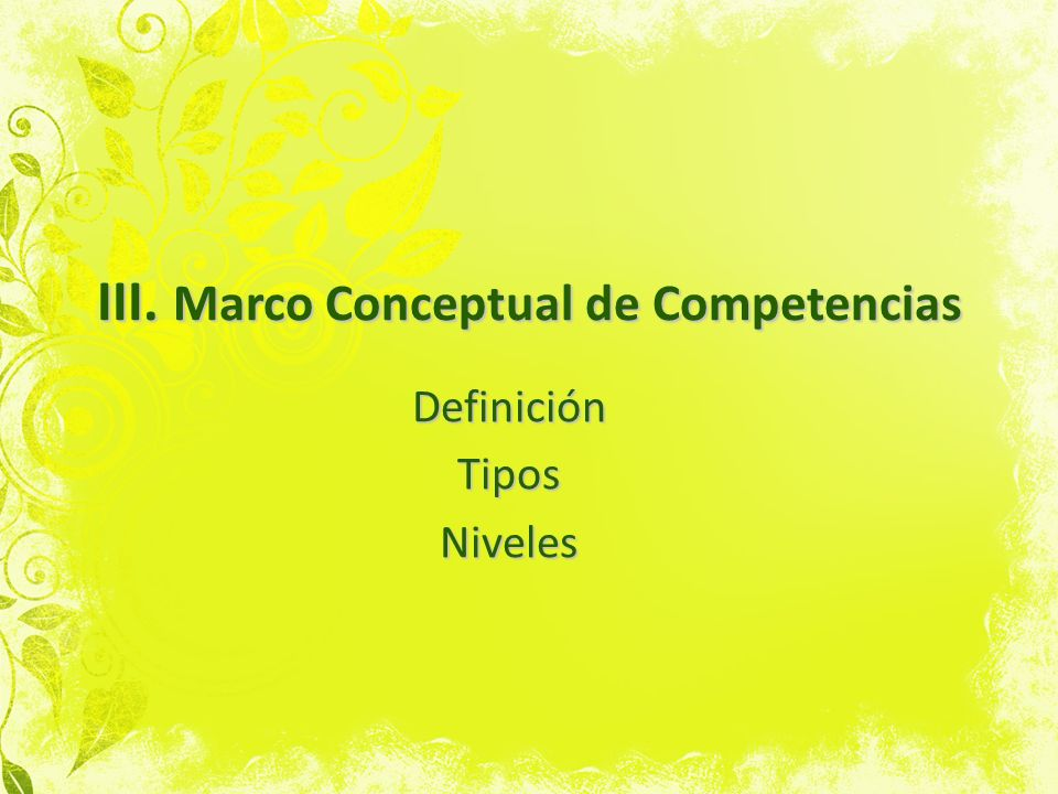 III. Marco Conceptual de Competencias DefiniciónTiposNiveles