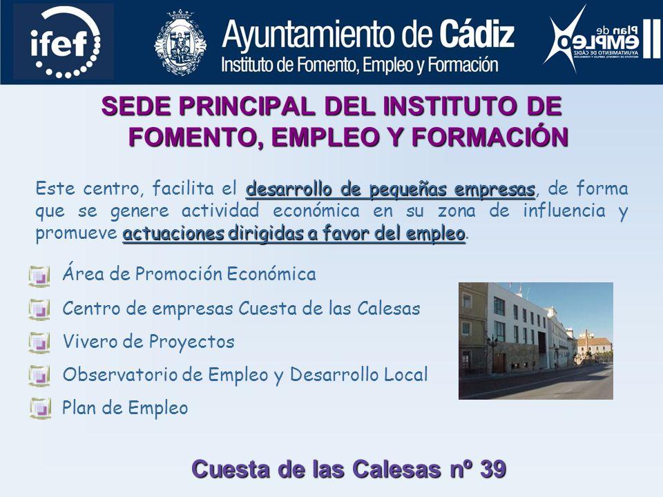 INSTITUTO DE FOMENTO, EMPLEO Y FORMACIÓN DEL AYUNTAMIENTO DE CÁDIZ El IFEF es el organismo que instrumenta la estrategia local en materia de empleo, s
