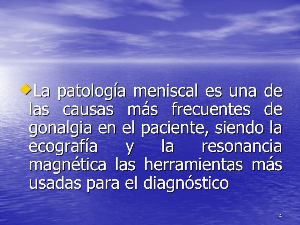 La patología meniscal es una de las causas más frecuentes de gonalgia en el paciente, siendo la ecografía y la resonancia magnética las herramientas m