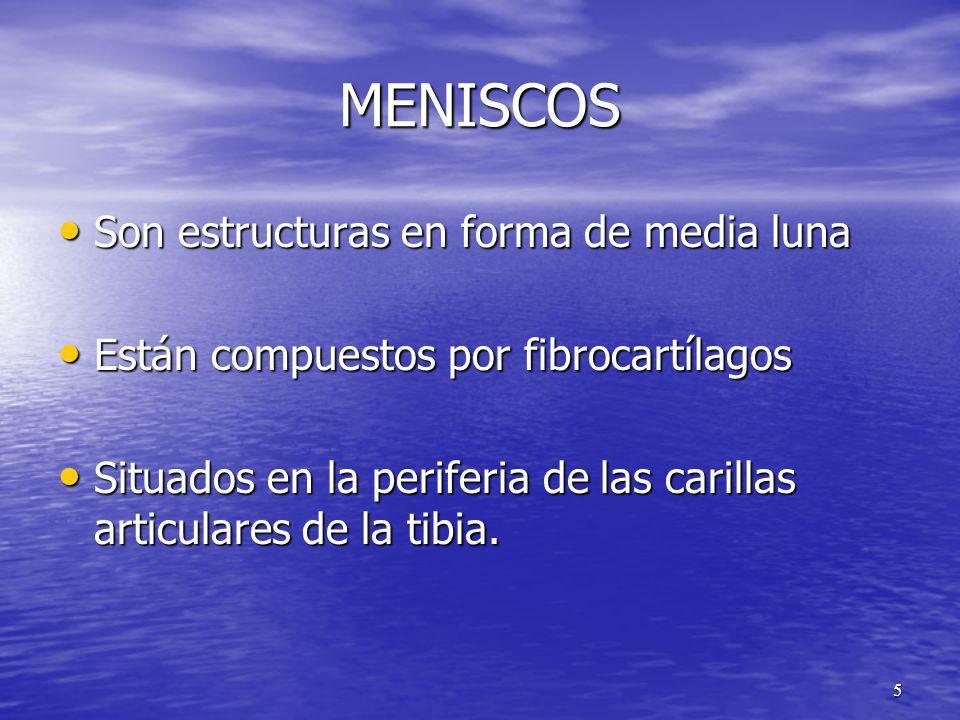 MENISCOS Son estructuras en forma de media luna Son estructuras en forma de media luna Están compuestos por fibrocartílagos Están compuestos por fibro
