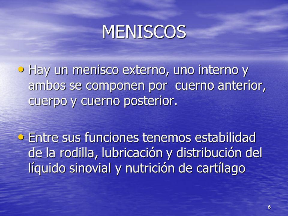MENISCOS Hay un menisco externo, uno interno y ambos se componen por cuerno anterior, cuerpo y cuerno posterior. Hay un menisco externo, uno interno y