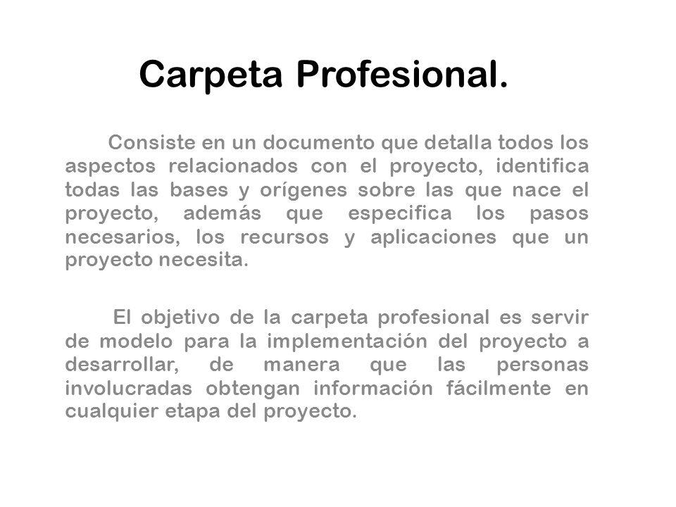 Carpeta Profesional. Consiste en un documento que detalla todos los aspectos relacionados con el proyecto, identifica todas las bases y orígenes sobre