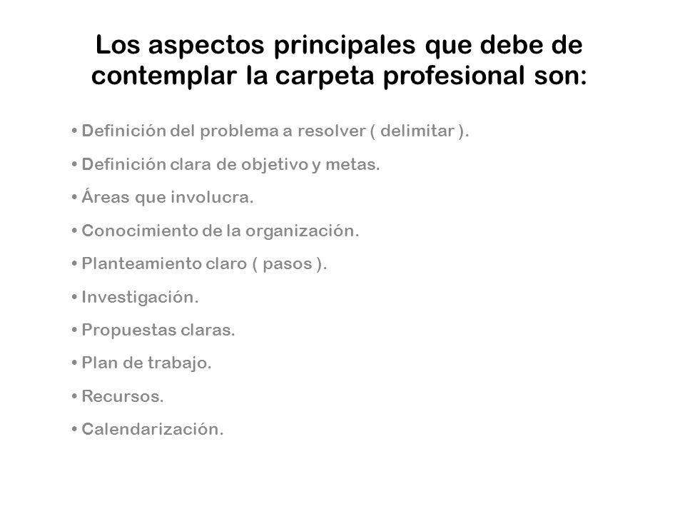 Los aspectos principales que debe de contemplar la carpeta profesional son: Definición del problema a resolver ( delimitar ). Definición clara de obje