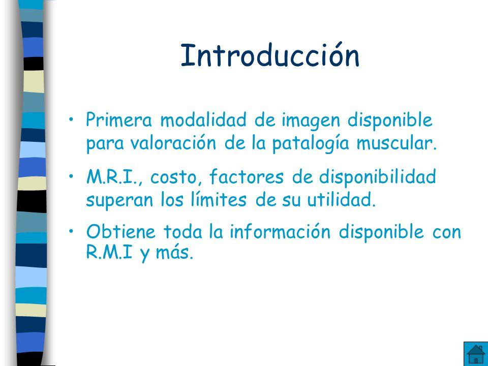 Índice Introducción Músculo Tendones Bursa Ligamentos US de grandes articulaciones Tumores US de dermis, hipodermis y periostio Cuerpo Extraño