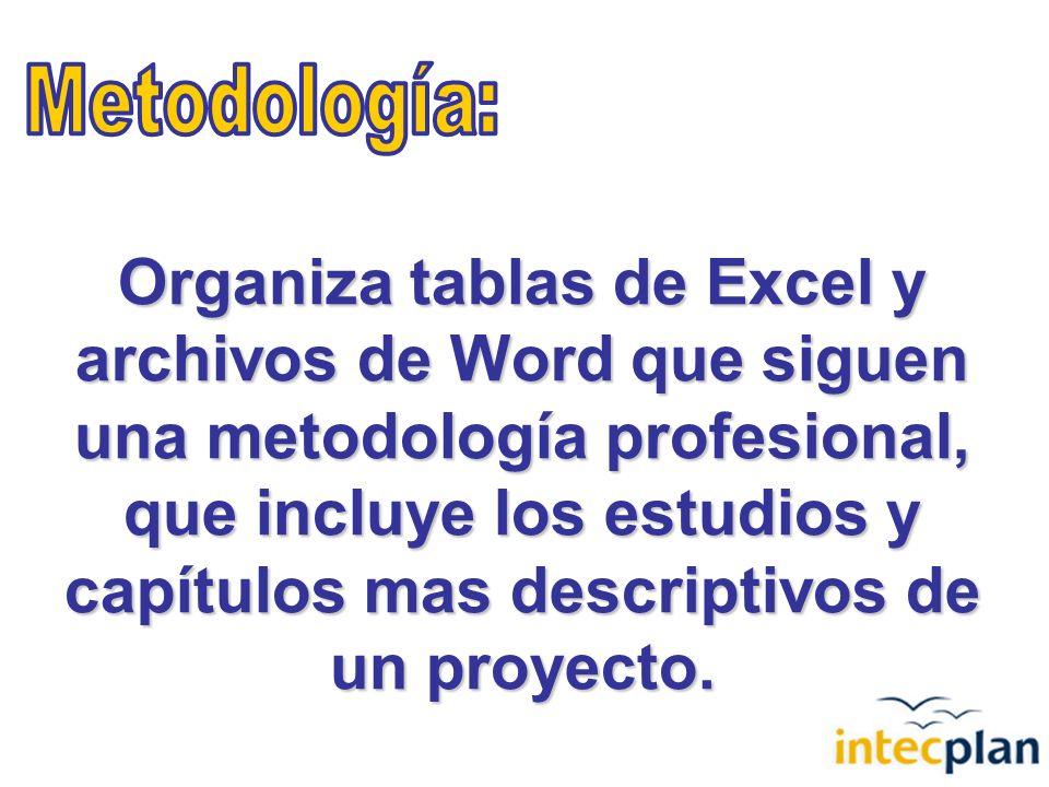 Organiza tablas de Excel y archivos de Word que siguen una metodología profesional, que incluye los estudios y capítulos mas descriptivos de un proyecto.