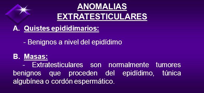 CRIPTORQUIDIA - Los testículos sin descender se localizan normalmente a nivel del anillo inguinal - Si la orquidopexia no se realiza en etapas tempran