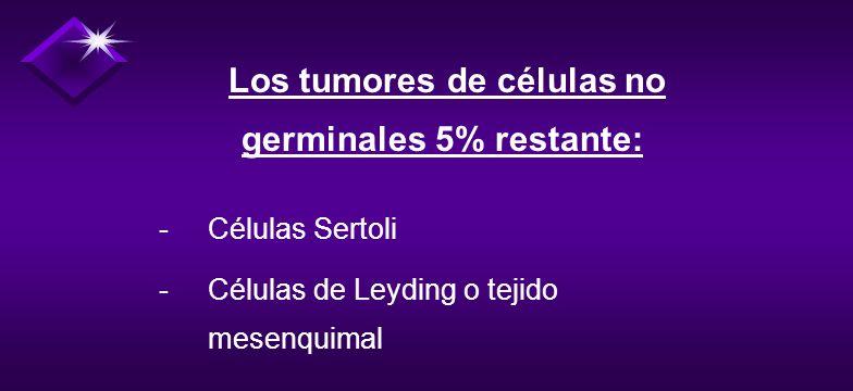 - 95% de los cánceres testiculares son de células germinales. 1. Seminomas (40 a 50%) 2. Carcinoma de células embrionarias (15 a 20 %) 3. Teratocarcin