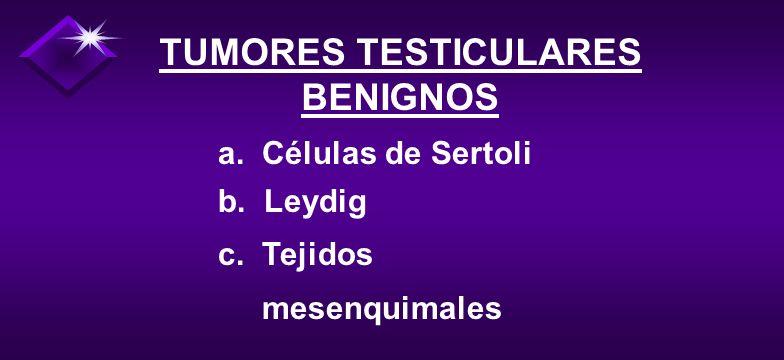 OTROS TUMORES TESTICULARES A. Metástasis: - Tracto Urinario - Pulmón - T. G. I. B. Leucemia y linfoma
