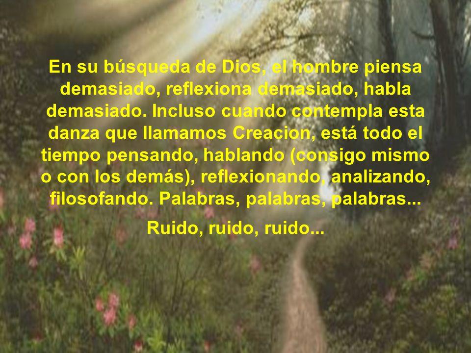 En su búsqueda de Dios, el hombre piensa demasiado, reflexiona demasiado, habla demasiado. Incluso cuando contempla esta danza que llamamos Creacion,