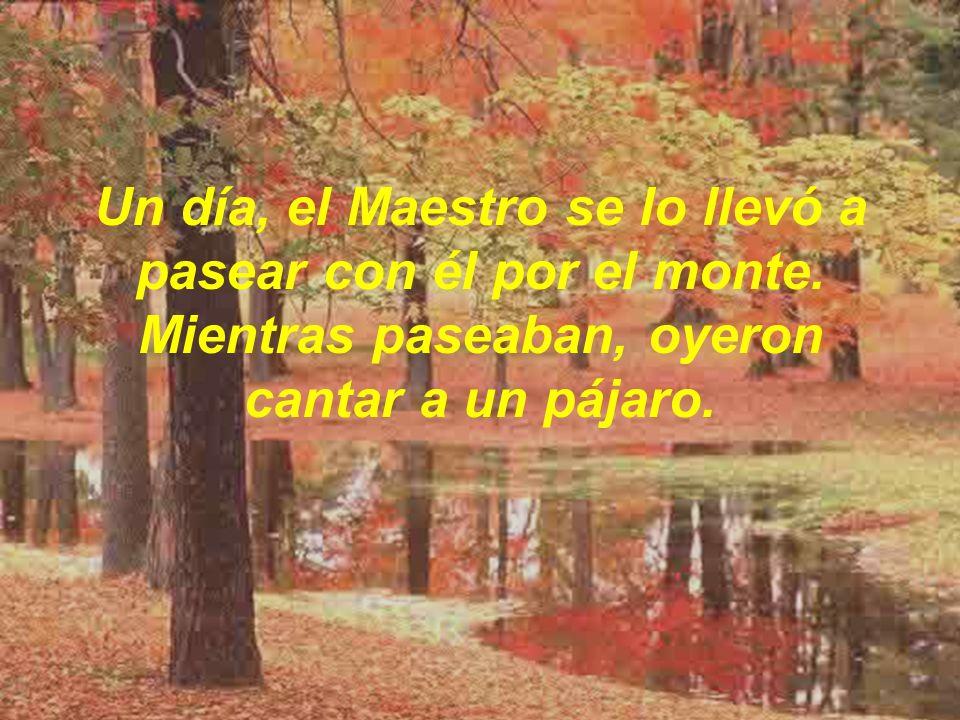 ¿Has oído cantar a ése pájaro? , le preguntó el Maestro Sí , respondió el discípulo.