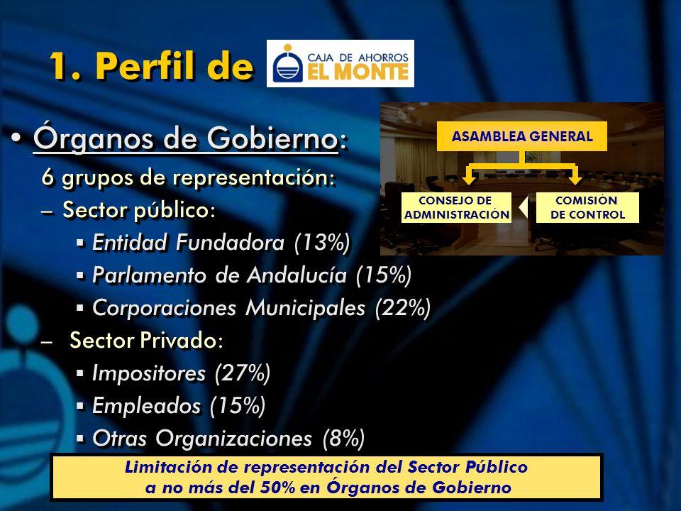 Órganos de Gobierno:Órganos de Gobierno: 6 grupos de representación: –Sector público: Entidad Fundadora (13%) Entidad Fundadora (13%) Parlamento de Andalucía (15%) Parlamento de Andalucía (15%) Corporaciones Municipales (22%) Corporaciones Municipales (22%) – Sector Privado: Impositores (27%) Impositores (27%) Empleados (15%) Empleados (15%) Otras Organizaciones (8%) Otras Organizaciones (8%) Órganos de Gobierno:Órganos de Gobierno: 6 grupos de representación: –Sector público: Entidad Fundadora (13%) Entidad Fundadora (13%) Parlamento de Andalucía (15%) Parlamento de Andalucía (15%) Corporaciones Municipales (22%) Corporaciones Municipales (22%) – Sector Privado: Impositores (27%) Impositores (27%) Empleados (15%) Empleados (15%) Otras Organizaciones (8%) Otras Organizaciones (8%) ASAMBLEA GENERAL CONSEJO DE ADMINISTRACIÓN COMISIÓN DE CONTROL Limitación de representación del Sector Público a no más del 50% en Órganos de Gobierno