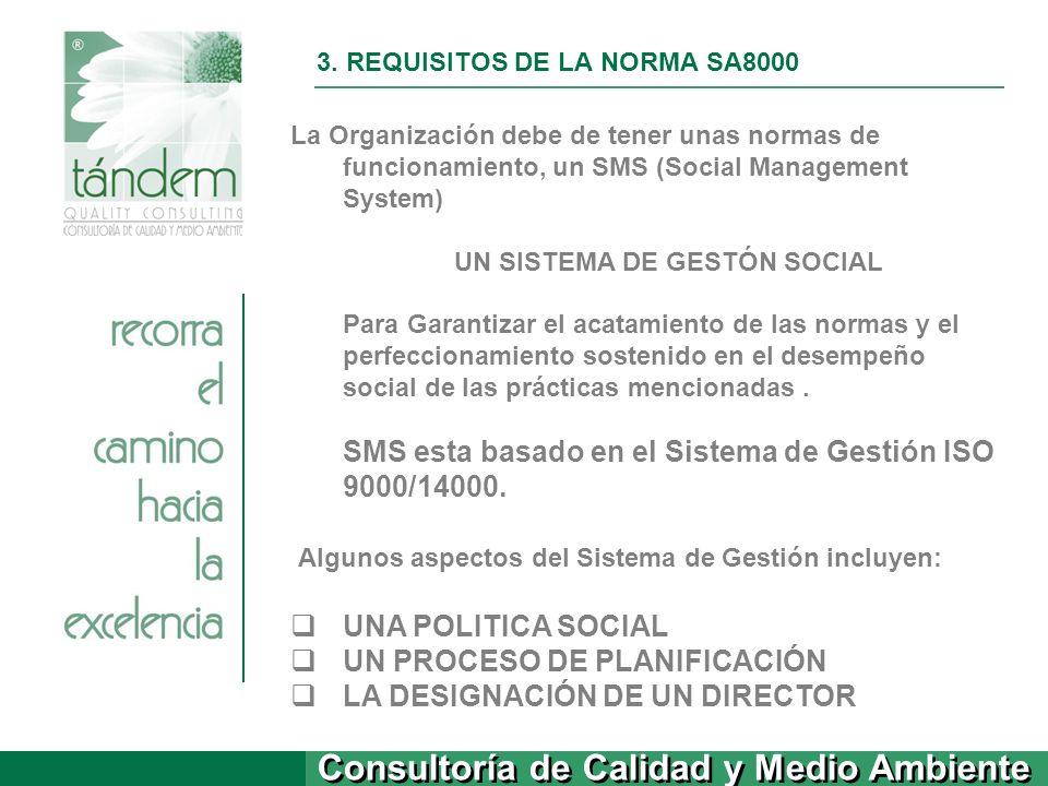 Consultoría de Calidad y Medio Ambiente 3. REQUISITOS DE LA NORMA SA8000 La Organización debe de tener unas normas de funcionamiento, un SMS (Social M