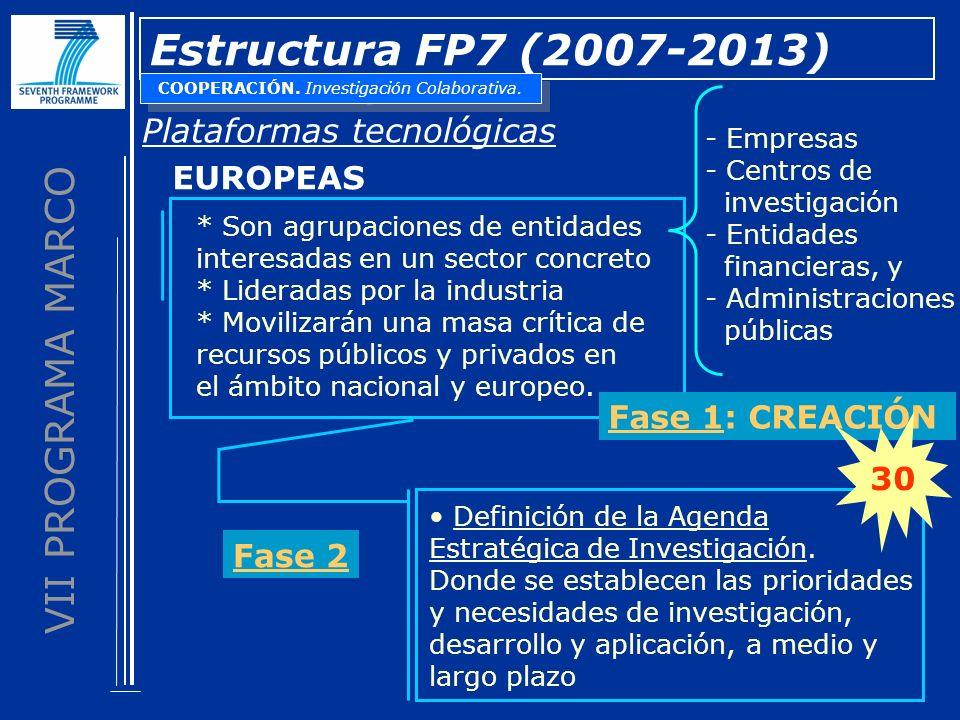 VII PROGRAMA MARCO Estructura FP7 (2007-2013) Plataformas tecnológicas * Son agrupaciones de entidades interesadas en un sector concreto * Lideradas por la industria * Movilizarán una masa crítica de recursos públicos y privados en el ámbito nacional y europeo.