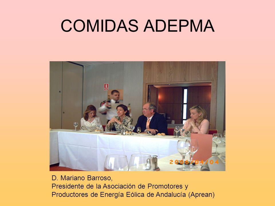 COMIDAS ADEPMA D. Mariano Barroso, Presidente de la Asociación de Promotores y Productores de Energía Eólica de Andalucía (Aprean)