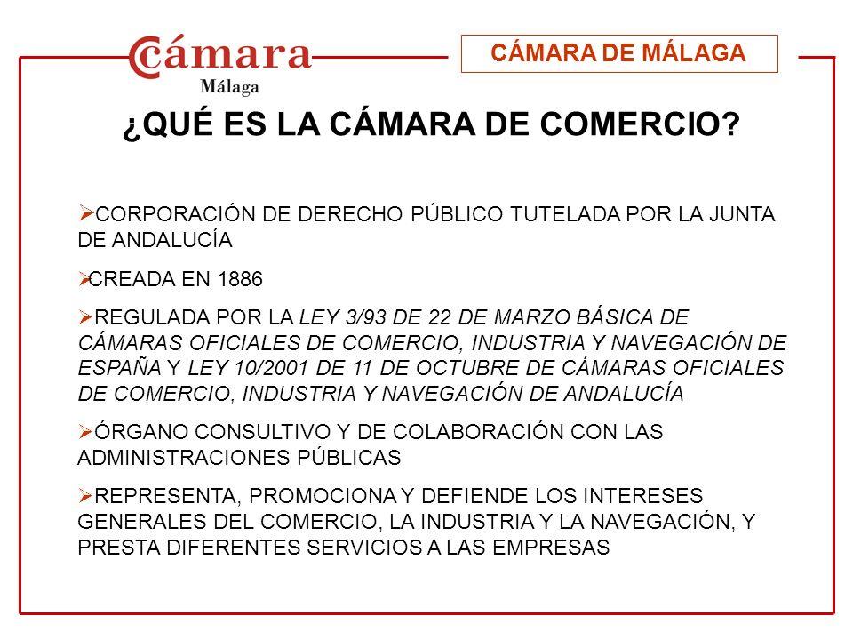 SERVICIOS DE LA CÁMARA DE MÁLAGA SERVICIO COMERCIAL COMERCIO INTERIOR COMERCIO EXTERIOR (2/3 presupuesto ingresos I.S) FORMACIÓN (1/3 presupuesto ingresos I.S) ORIENTACIÓN LABORAL S.C.O.P.