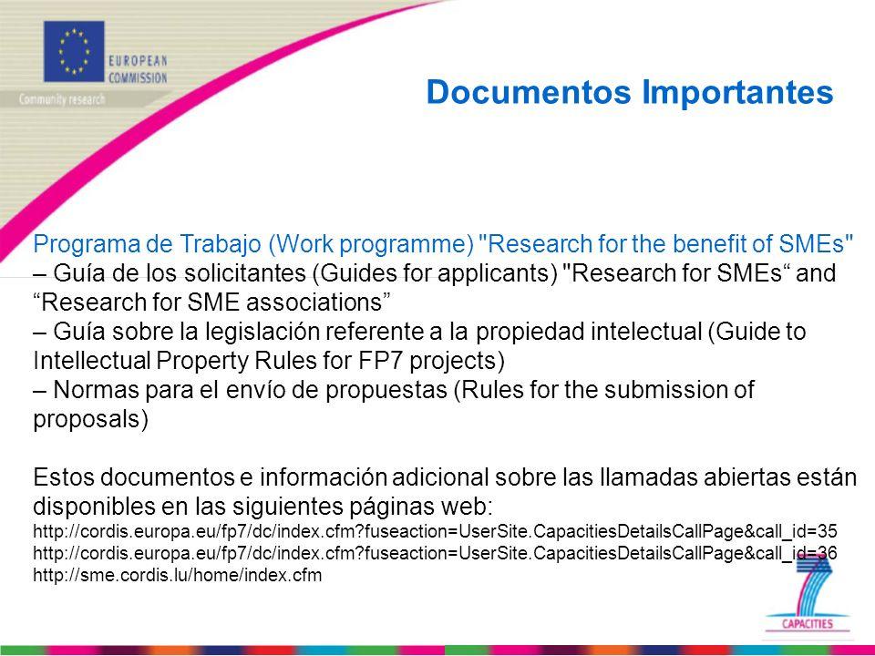 Programa de Trabajo (Work programme)