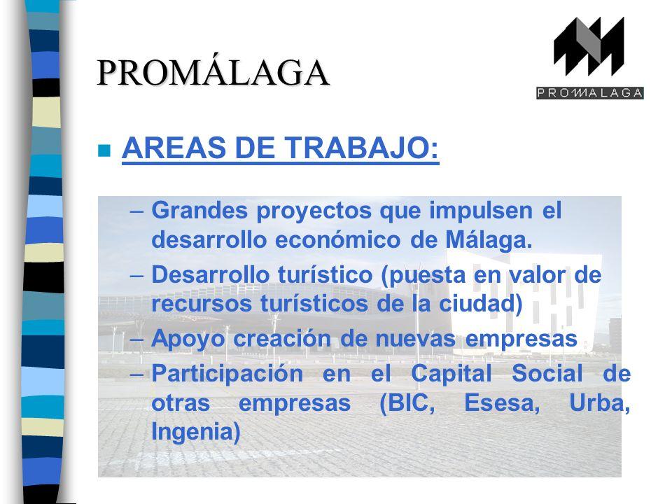 n AREAS DE TRABAJO: –Grandes proyectos que impulsen el desarrollo económico de Málaga.