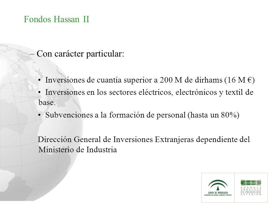 Fondos Hassan II – Con carácter particular: Inversiones de cuantía superior a 200 M de dirhams (16 M ) Inversiones en los sectores eléctricos, electró