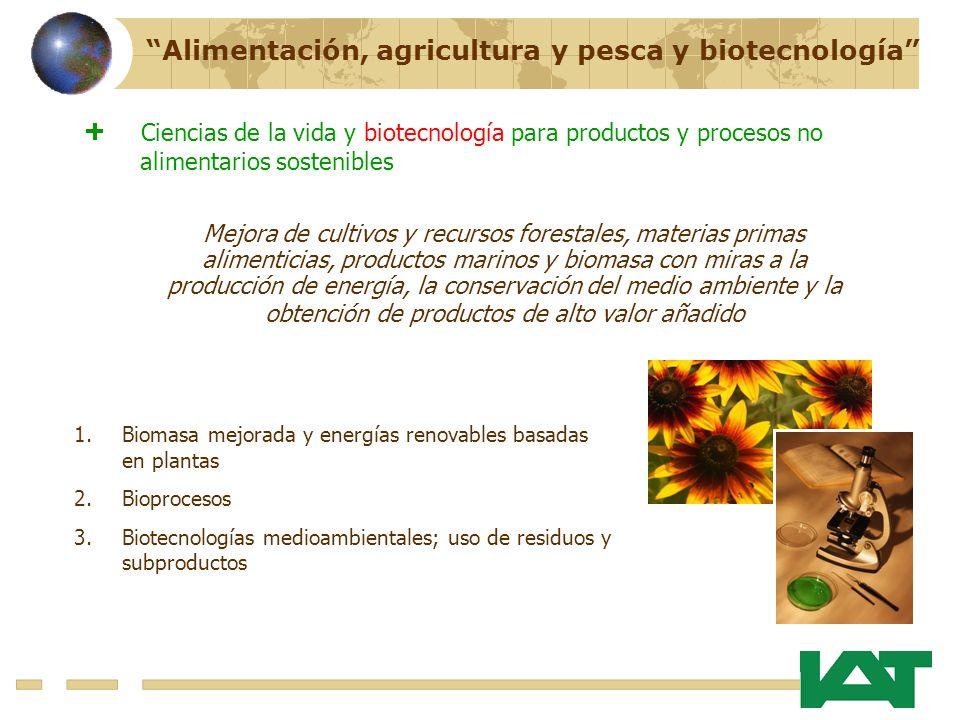 Alimentación, agricultura y pesca y biotecnología Mejora de cultivos y recursos forestales, materias primas alimenticias, productos marinos y biomasa con miras a la producción de energía, la conservación del medio ambiente y la obtención de productos de alto valor añadido 1.Biomasa mejorada y energías renovables basadas en plantas 2.Bioprocesos 3.Biotecnologías medioambientales; uso de residuos y subproductos Ciencias de la vida y biotecnología para productos y procesos no alimentarios sostenibles