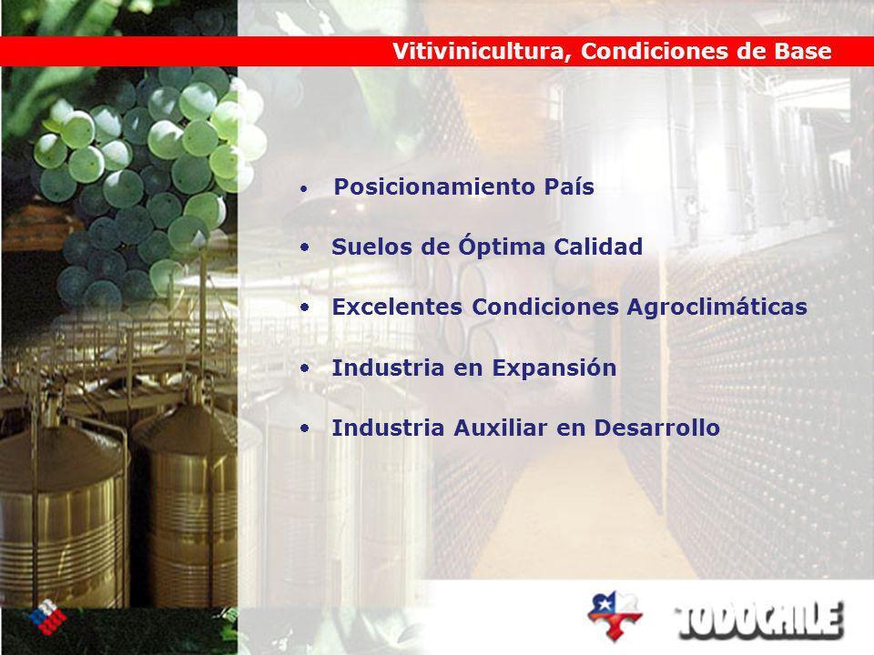 Posicionamiento País Suelos de Óptima Calidad Excelentes Condiciones Agroclimáticas Industria en Expansión Industria Auxiliar en Desarrollo Vitivinicultura, Condiciones de Base