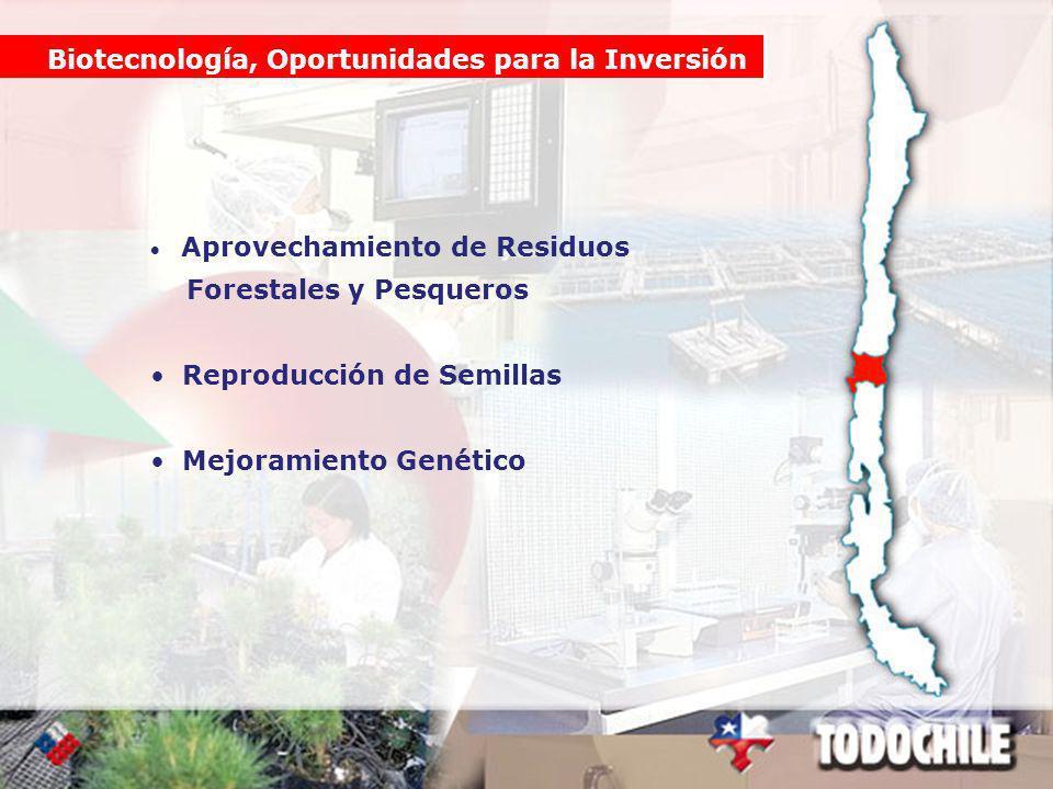 Biotecnología, Oportunidades para la Inversión Aprovechamiento de Residuos Forestales y Pesqueros Reproducción de Semillas Mejoramiento Genético