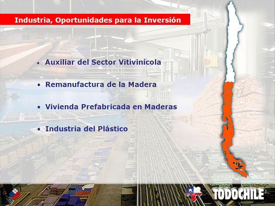 Industria, Oportunidades para la Inversión Auxiliar del Sector Vitivinícola Remanufactura de la Madera Vivienda Prefabricada en Maderas Industria del Plástico