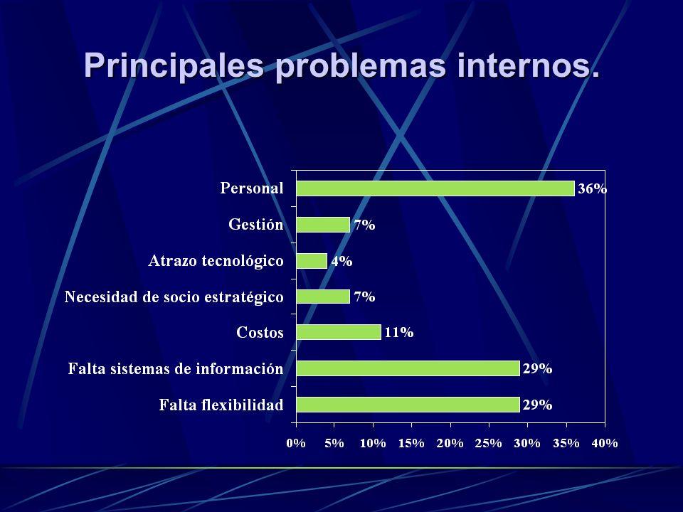 Principales problemas internos.