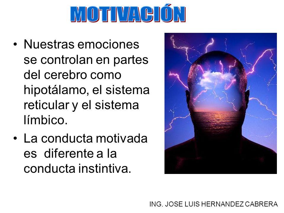Nuestras emociones se controlan en partes del cerebro como hipotálamo, el sistema reticular y el sistema límbico.