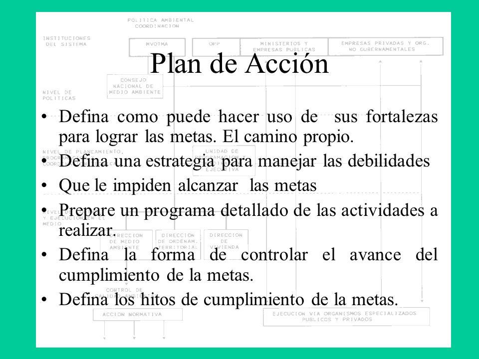 Plan de Acción Defina como puede hacer uso de sus fortalezas para lograr las metas. El camino propio. Defina una estrategia para manejar las debilidad