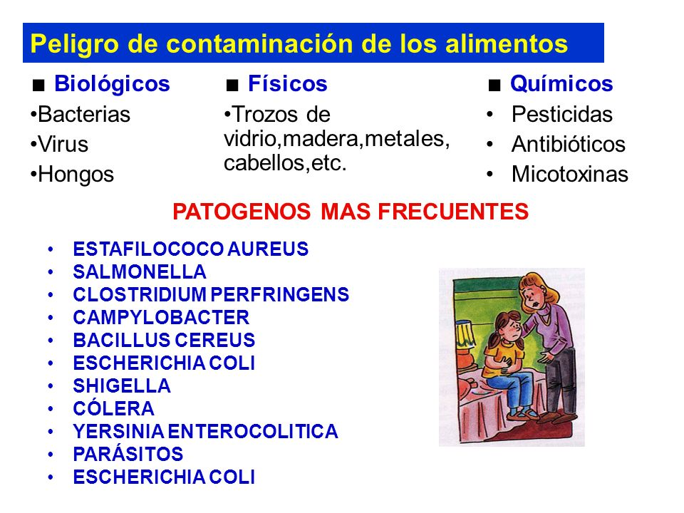 Peligro de contaminación de los alimentos Químicos Pesticidas Antibióticos Micotoxinas Biológicos Bacterias Virus Hongos Físicos Trozos de vidrio,madera,metales, cabellos,etc.