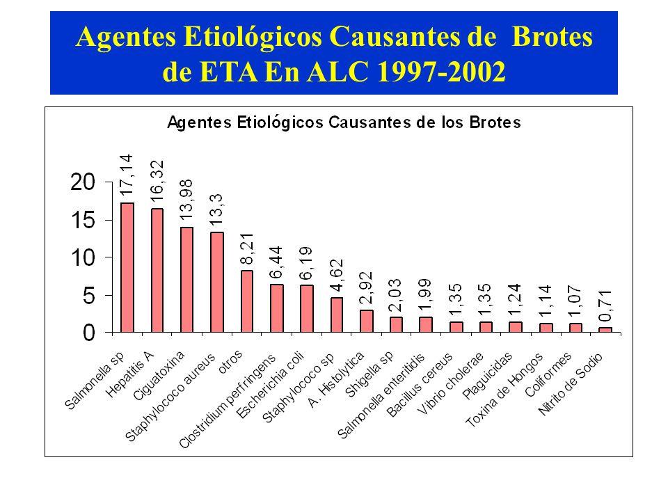 Fuente: SIRVETA Agentes Etiológicos Causantes de Brotes de ETA En ALC 1997-2002