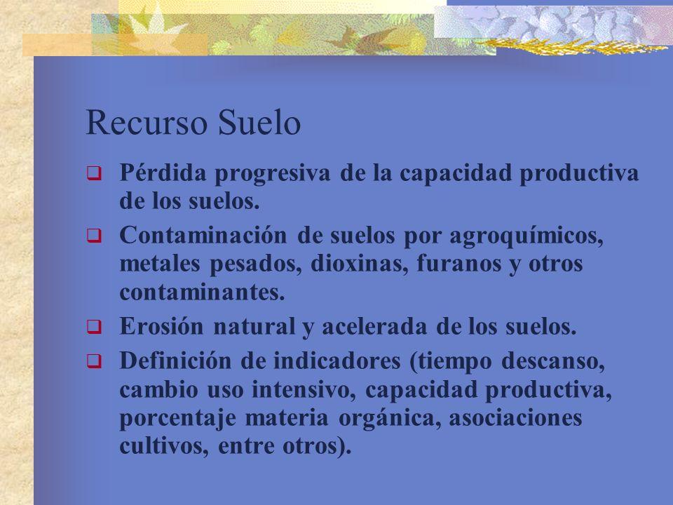 Recurso Suelo Pérdida progresiva de la capacidad productiva de los suelos. Contaminación de suelos por agroquímicos, metales pesados, dioxinas, furano