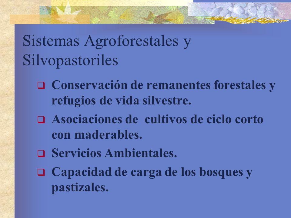 Sistemas Agroforestales y Silvopastoriles Conservación de remanentes forestales y refugios de vida silvestre. Asociaciones de cultivos de ciclo corto