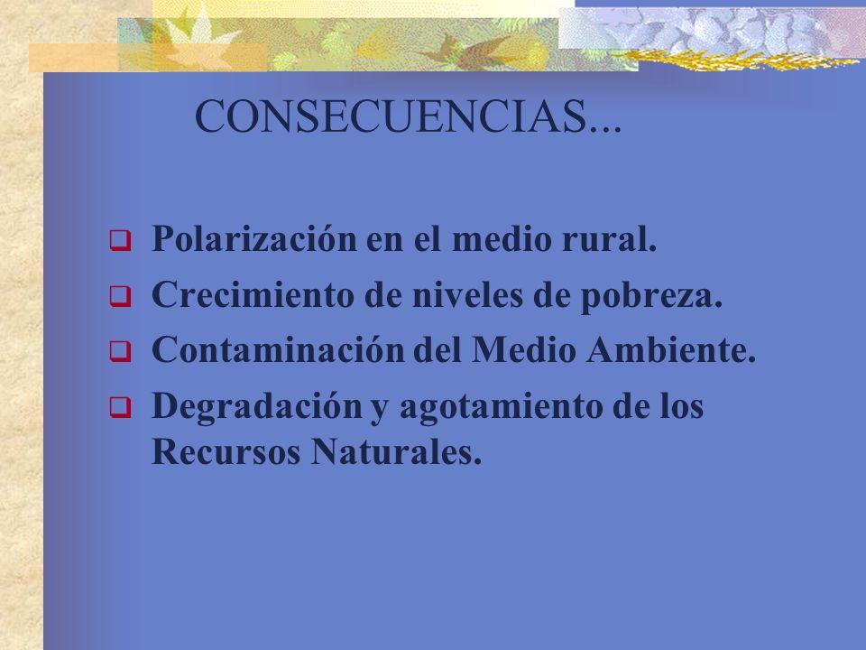 CONSECUENCIAS... Polarización en el medio rural. Crecimiento de niveles de pobreza. Contaminación del Medio Ambiente. Degradación y agotamiento de los