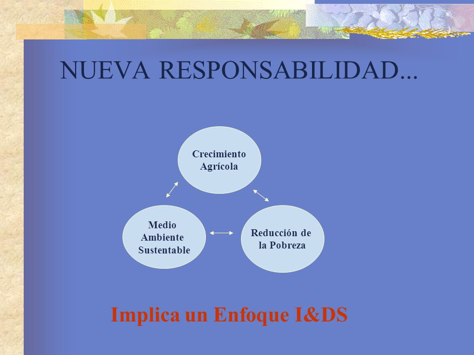 NUEVA RESPONSABILIDAD... Implica un Enfoque I&DS Crecimiento Agrícola Medio Ambiente Sustentable Reducción de la Pobreza