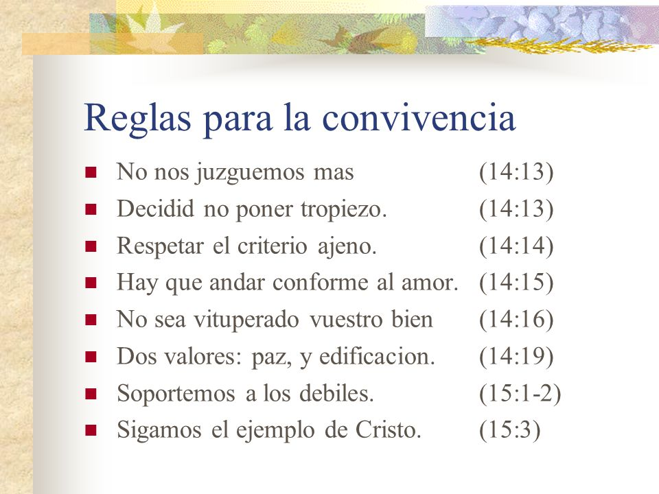 Asuntos en comun La firmeza depende del Señor(14:4) Lo importante es sus convicciones. (14:5) El servicio es para el Señor.(14:6) Todos compareceremos