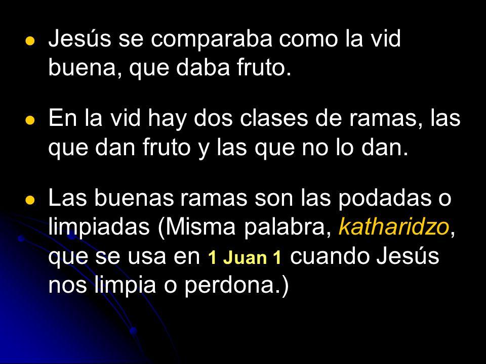 Jesús se comparaba como la vid buena, que daba fruto. En la vid hay dos clases de ramas, las que dan fruto y las que no lo dan. Las buenas ramas son l
