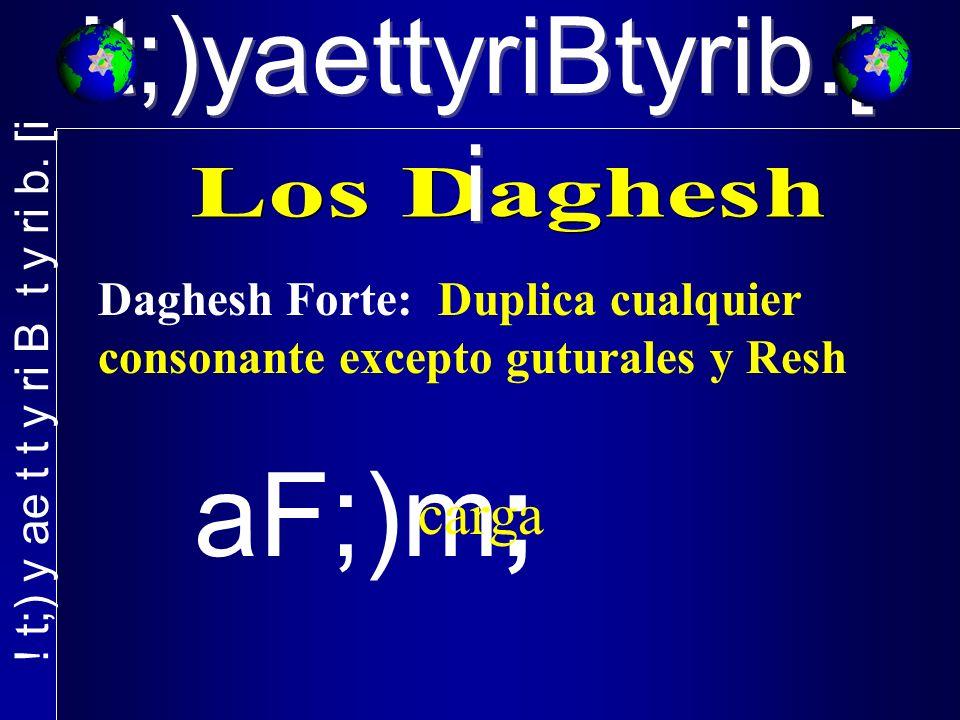 !t;)yaettyriBtyrib.[ i Daghesh Forte: Duplica cualquier consonante excepto guturales y Resh aF;)m; carga