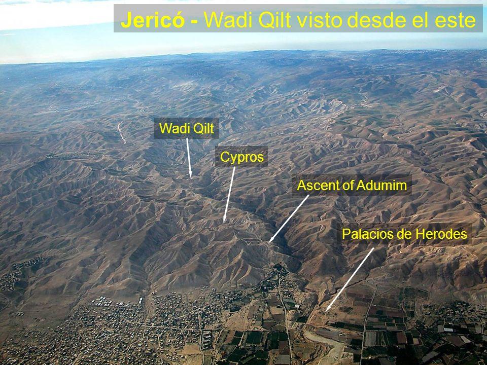 Jericó - Wadi Qilt visto desde el este Palacios de Herodes Ascent of Adumim Cypros Wadi Qilt