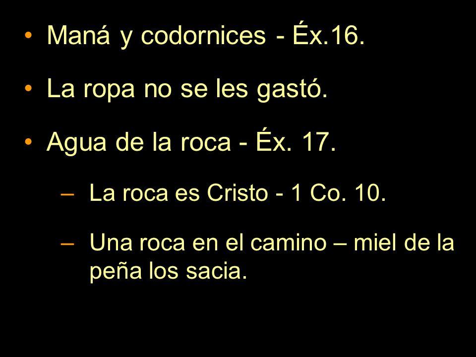Maná y codornices - Éx.16. La ropa no se les gastó. Agua de la roca - Éx. 17. –La roca es Cristo - 1 Co. 10. –Una roca en el camino – miel de la peña
