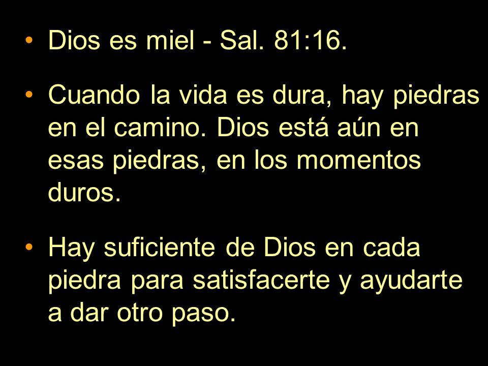 Dios es miel - Sal. 81:16. Cuando la vida es dura, hay piedras en el camino. Dios está aún en esas piedras, en los momentos duros. Hay suficiente de D