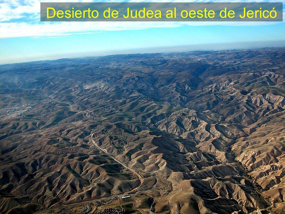 Desierto de Judea al oeste de Jericó