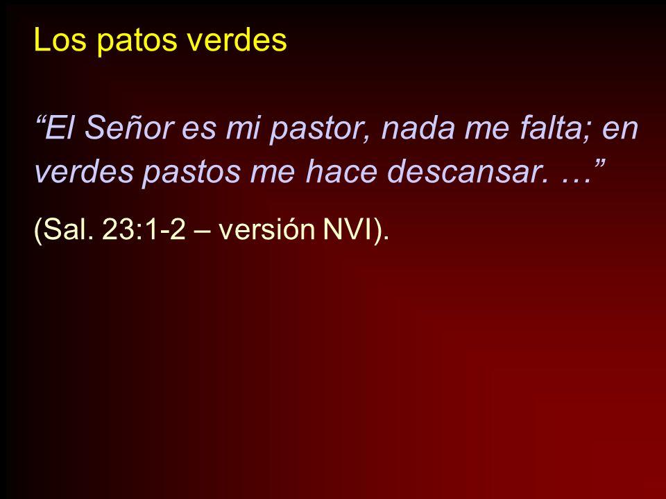 Los patos verdes El Señor es mi pastor, nada me falta; en verdes pastos me hace descansar. … (Sal. 23:1-2 – versión NVI).