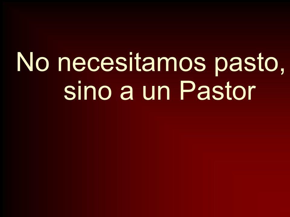 No necesitamos pasto, sino a un Pastor