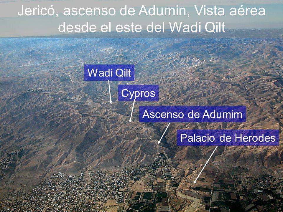Jericó, ascenso de Adumin, Vista aérea desde el este del Wadi Qilt Wadi Qilt Cypros Ascenso de Adumim Palacio de Herodes