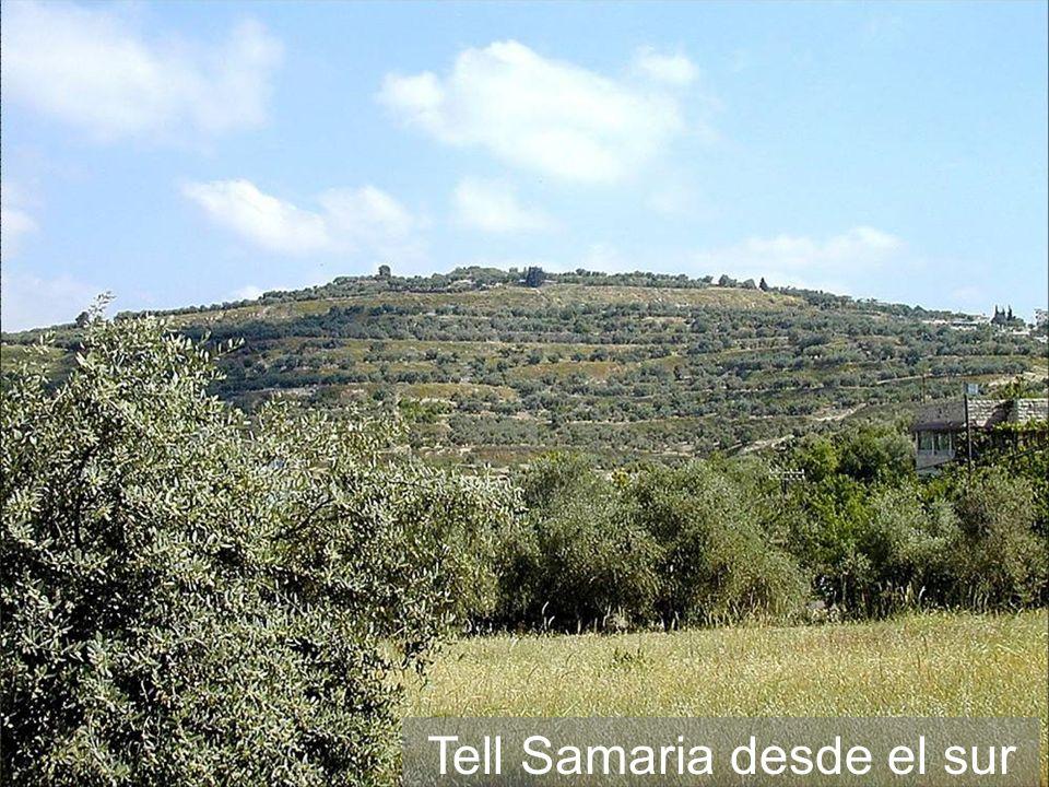 Tell Samaria desde el sur