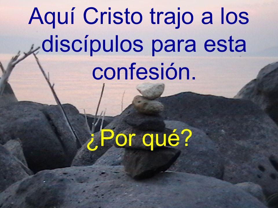 Aquí Cristo trajo a los discípulos para esta confesión. ¿Por qué?