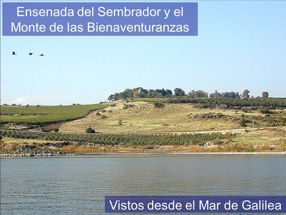 Ensenada del Sembrador y el Monte de las Bienaventuranzas Vistos desde el Mar de Galilea
