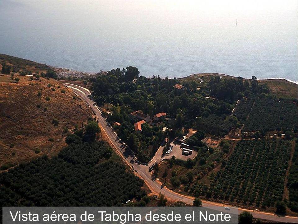 Vista aérea de Tabgha desde el Norte