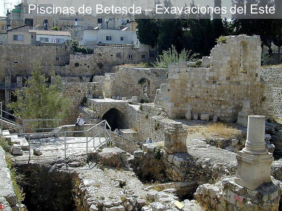 Piscinas de Betesda – Exavaciones del Este